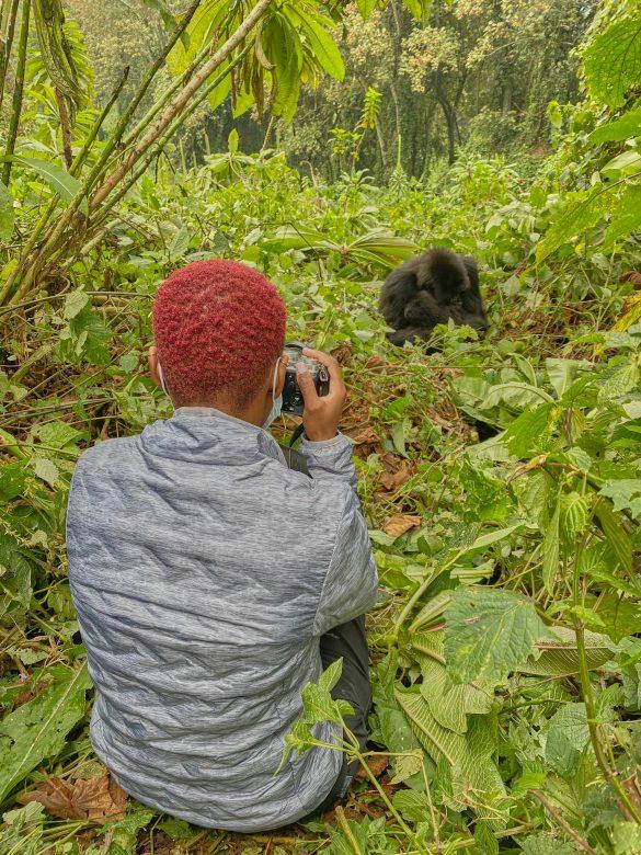 ashleighrm gorilla trekking